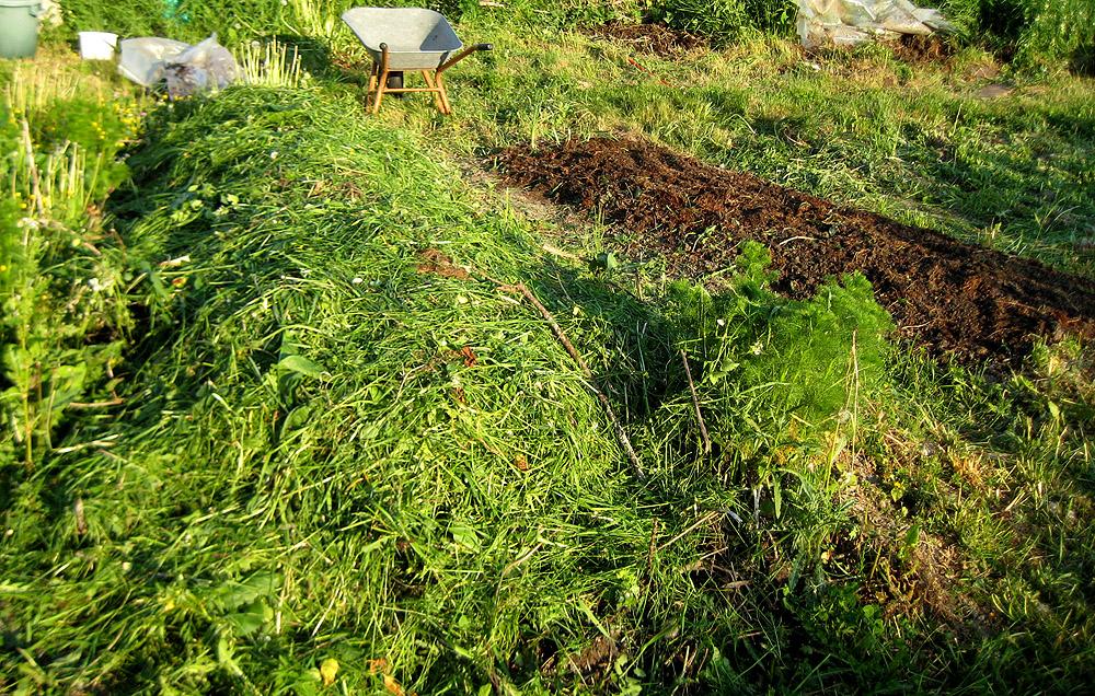 Komposthaufen und Beet