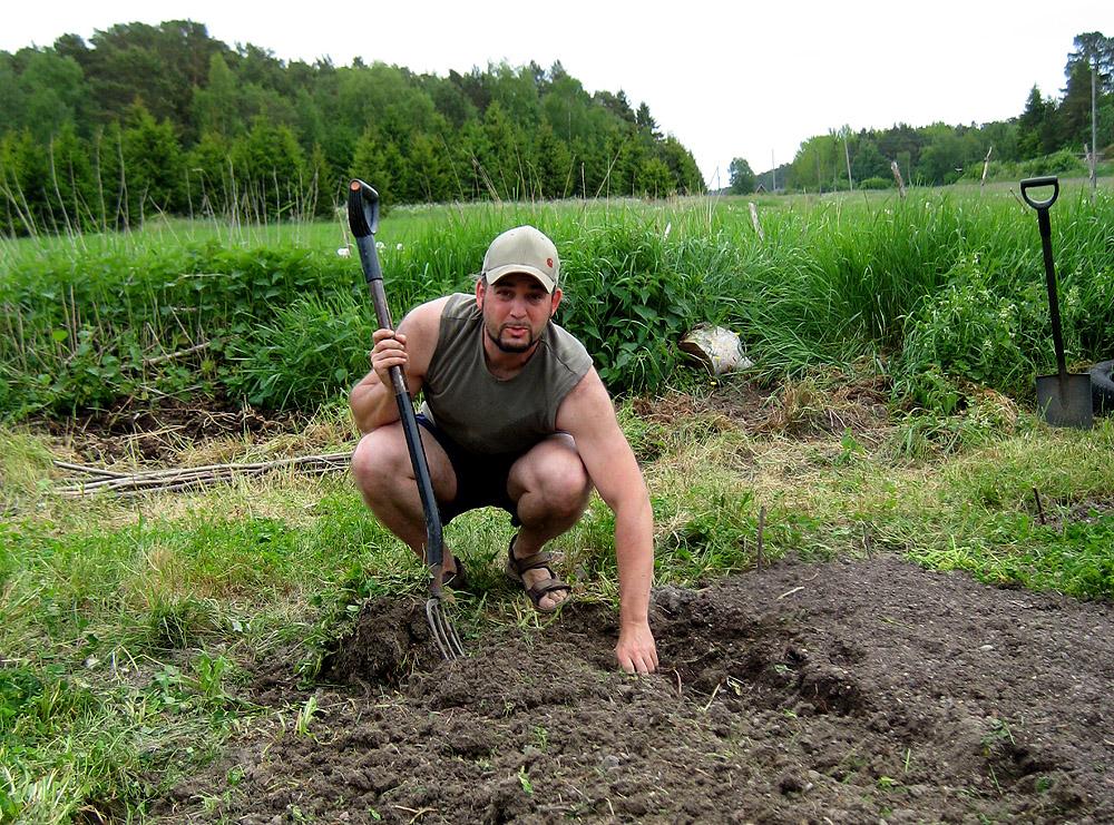 Stefan beim gärtnern
